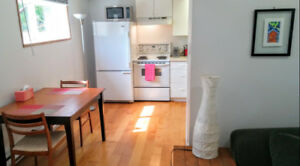 Bright Downtown 1 Bedroom - Available Feb 1, 2019