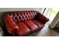 Chesterfield Setter in Ox blood red