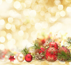 Christmas photography backdrops and floordrops--$50 and up