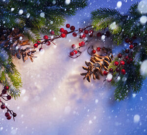 Christmas photography backdrops and floordrops--$50 and up Kitchener / Waterloo Kitchener Area image 5