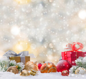 Christmas Photography Backdrops and Floordrops-$50 and up
