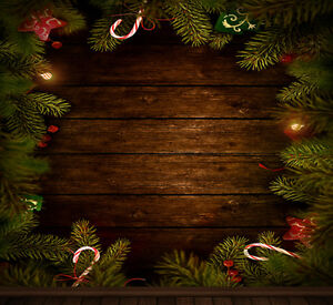 Christmas photography backdrops and floordrops--$50 and up Kitchener / Waterloo Kitchener Area image 6