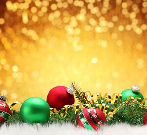 Christmas photography backdrops and floordrops--$50 and up Kitchener / Waterloo Kitchener Area image 3