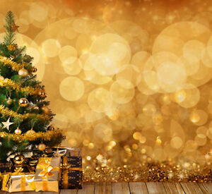 Christmas photography backdrops and floordrops--$50 or more Stratford Kitchener Area image 10