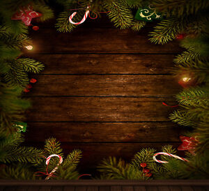 Christmas photography backdrops and floordrops--$50 or more Stratford Kitchener Area image 3