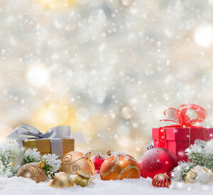 Christmas photography backdrops and floordrops--$50 or more