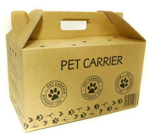 Cardboard Cat Travel Box