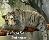Massage de relaxation.