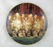 Danbury Mint Cat