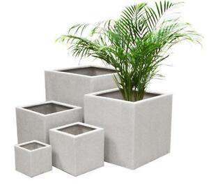 Large Indoor Planters