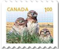Wanted: Postage stamps