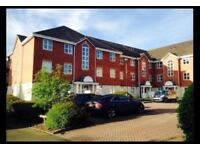 Large 2 Bedroom Apartment - Four Oaks