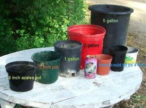 Pots 2 gallons , 3 gallons et autres grosseurs  !