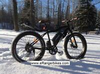 Sustainable Transportation eRanger electric fat bike 500w 48v