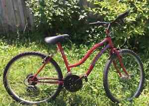 Ladies Adult Raleigh Mountain Bike
