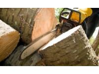 Tree services and garden maintenance
