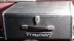 VINTAGE TRAYNOR YVM-6 WITH MATCHING COLUMN SPEAKERS