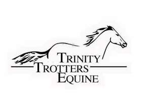 Available at Trinity Trotters Equine