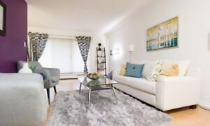 Whole apartment - No 3 Rd & Williams Rd - Broadmoor