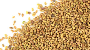 FORAGE SEED FOR SALE