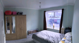 Double room available for rent £350pcm