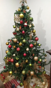 Christmas tree (no ornaments)