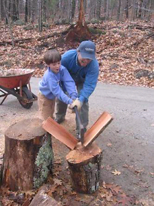 Firewood, Cut your own! Cherryville Adelaide Hills Preview