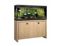 Fluval Roma 240 fish tank and accessories