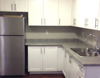 NEW Renovated 2 Bedroom + 3 Appliances, Parking Inclusive!