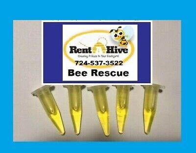 Honeybee Swarm Lure 5 Pack Honey Bee Scent Beehive Hive Bait Box Trap Beekeeper
