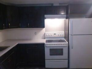 NEWLY RENOVATED 2 BDR! -  CENTRAL LOCATION