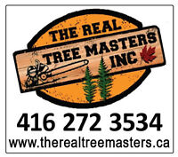 TREE REMOVAL, TRIMMING, PRUNING & CARE SERVICES - LOWEST Prices!