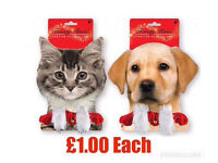 Christmas gifts for your pets 🐶🐱
