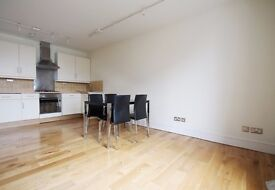 Large two double bedroom apartment with huge communal terrace overlooking the Oval cricket ground