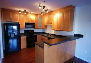Luxury Downtown University Condo for Lease