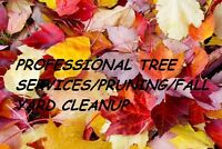 PROFESSIONAL TREE SERVICES/PRUNING/FALL YARD CLEANUP