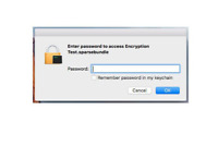 Forgotten Password. Need Help to Recover Documents