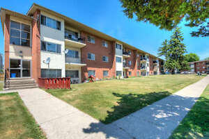 Starting from $725.00 Newly RENOVATED 1 and 2 Bedroom Apartments