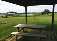 House for Rent on Beautiful Horse Farm in Milton (3 bedrooms)