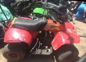 Mighty Mouse Quad for sale London Ontario image 1