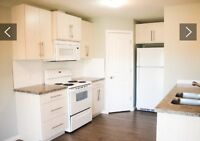 Bright Room For Rent In Strathmore