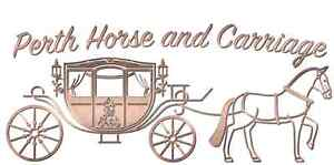 Perth Horse and Carriage Baldivis Rockingham Area Preview
