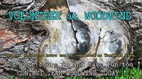 Volunteer at Woodwind Farm