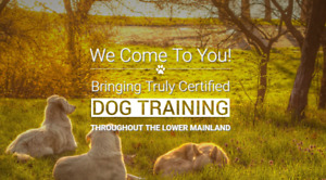 NEED A CERTIFIED DOG TRAINER?MOBILE EVERYWHERE GVRD