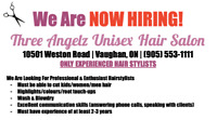 Hairstylists WANTED!!