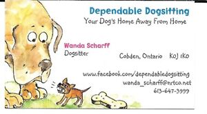 KENNEL FREE IN HOME DOGSITTING