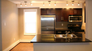 Fully Furnished + All Utilities Southwest Condo (2 Bed/2 Bath)