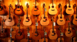 Wanted: Quality Acoustic Electric Guitar