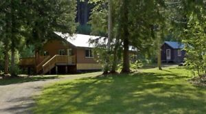 Quesnel Lake/Likely House Acreage for Rent $1100 Month.