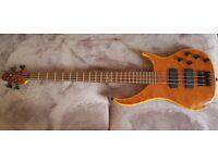Peavey cirrus bass guitar